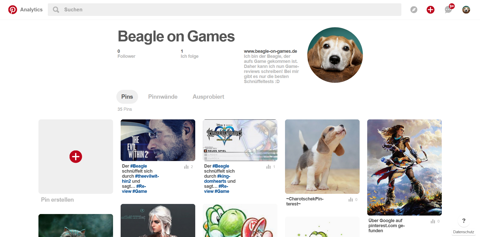 BeaglePinterest